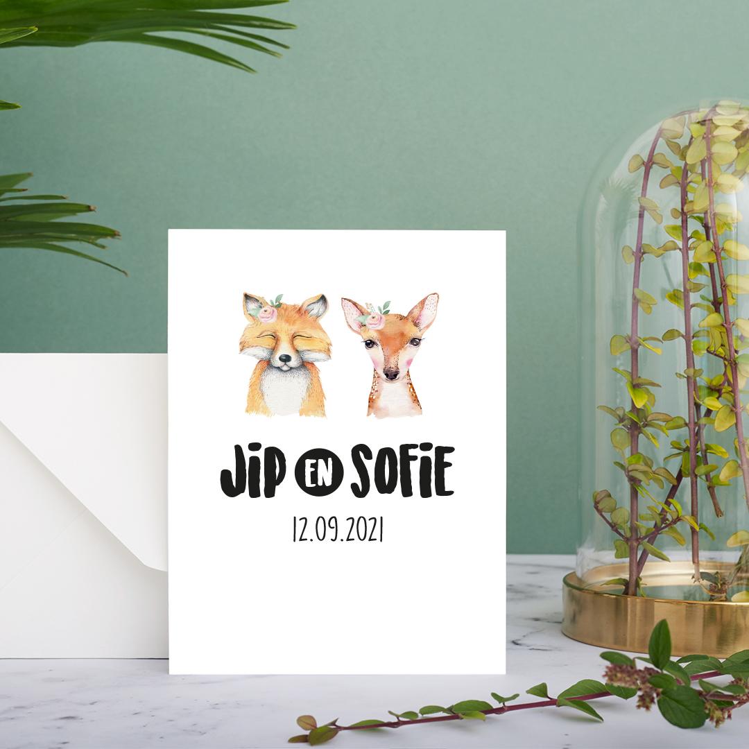 Geboortekaartje Jip en Sofie